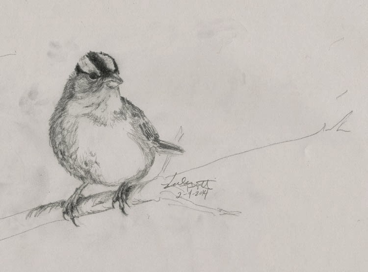 I used this pencil sketch to help me plan out my watercolor painting.