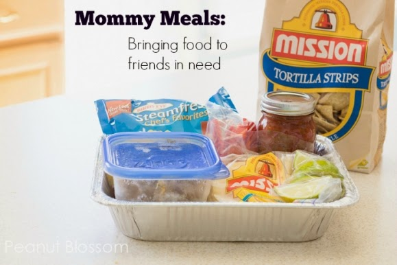 30 Days of Mommy Meals