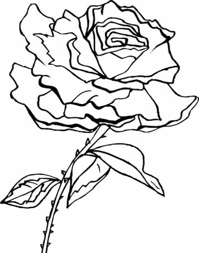 Coloring Blog For Kids Rose Flower Coloring Page Pictures