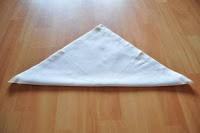 Butterfly Napkin Folding #1