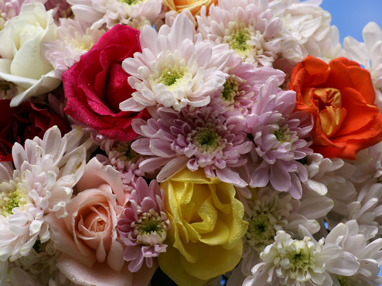 Imagenes De Ramos De Flores Lindas - 60 fotografías de las flores más hermosas del mundo