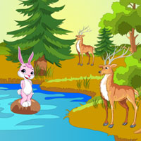 Wow Escape Female Bunny