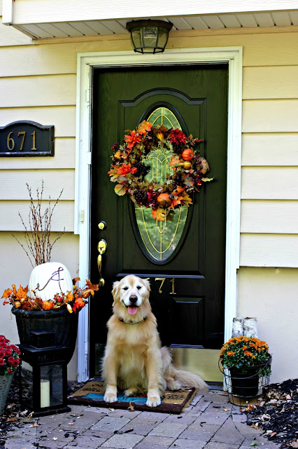Golden retriever in front of fall front door-www.goldenboysandme.com