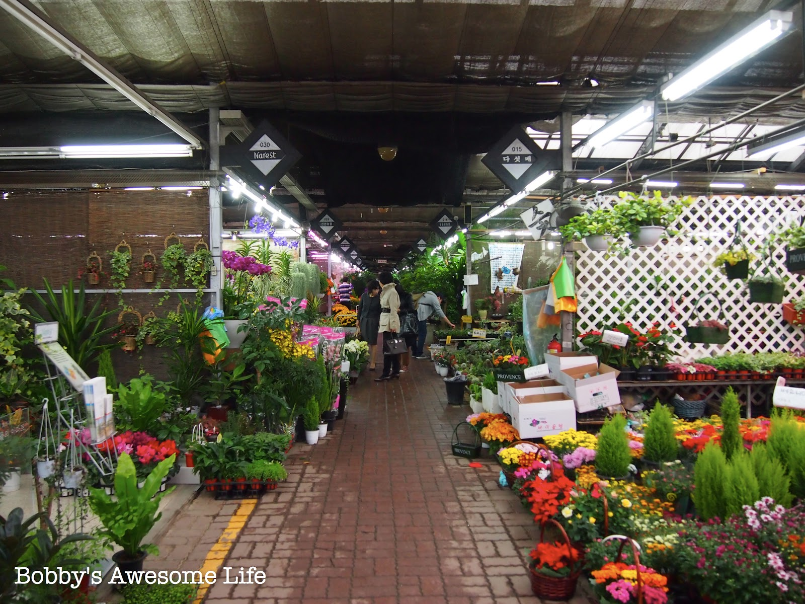 Yangjae Flower Market Bobby39s Awesome Life