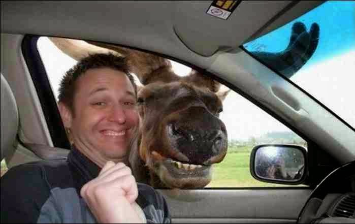 Funny selfie photo 007