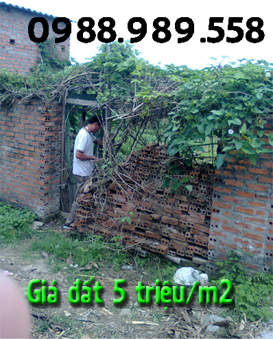 Gia lâm Hà Nội bán đất 5 triệu đồng