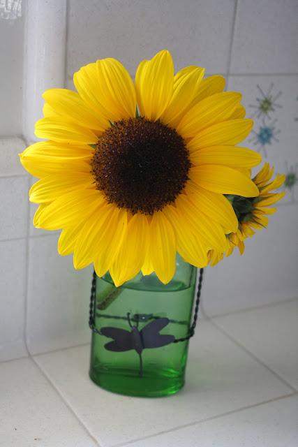 Sunny Simple Life Make Cut Sunflowers Last Longer