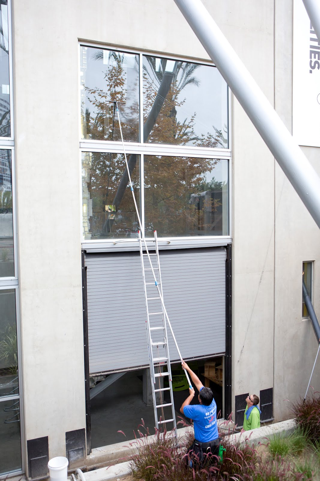 Robinson Solutions Professional Window Cleaning San