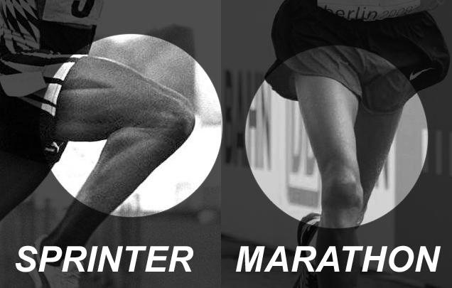 Marathon runner body vs sprinter