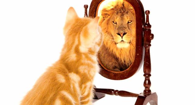 Gênesis 1:26 Façamos o homem à nossa imagem, conforme a nossa semelhança