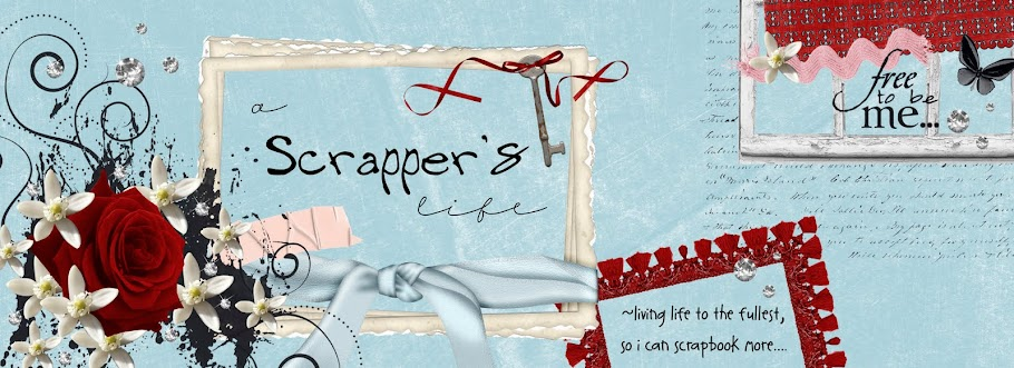 A Scrapper&#39;s Life
