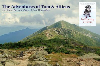 The Adventures of Tom & Atticus