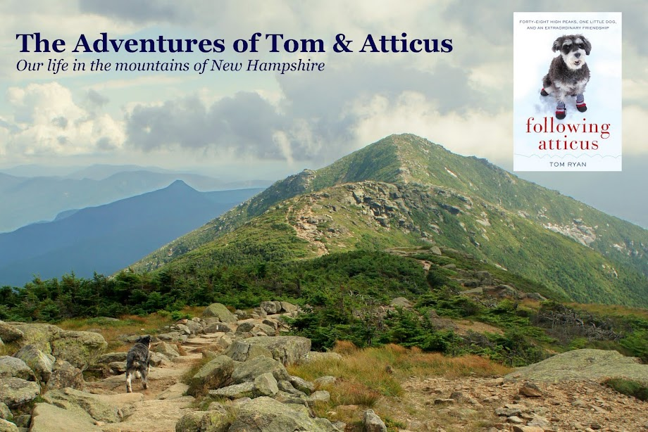 The Adventures of Tom &amp; Atticus