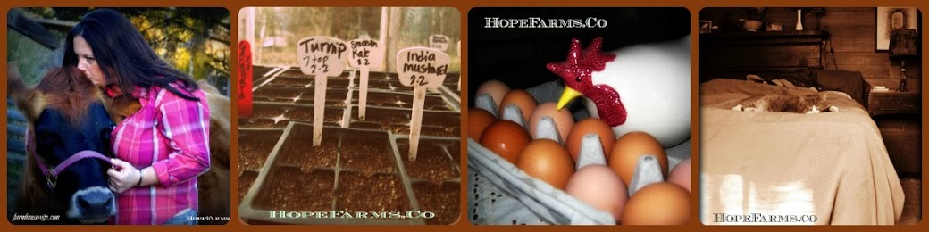 Hope Farms