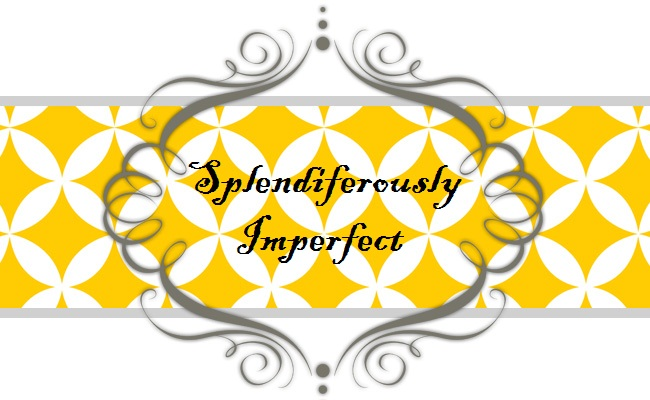 Splendiferously Imperfect