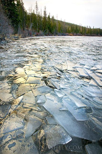 Ice shards in the lake today (c) John Ashley