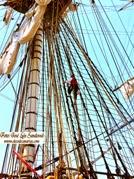 El adiós del velero Hermione, Las Palmas