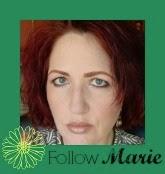 I am the makeup junkie Bloglovin' Blog Hop Blogging