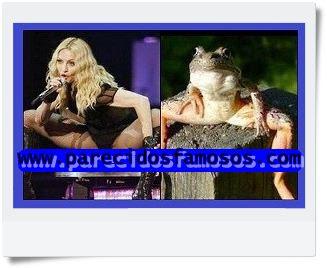Madonna y Rana
