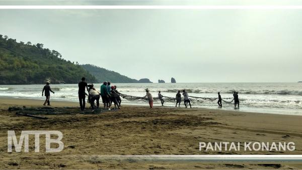 SEBELUM DILARANG! Yuk Menikmati Sensasi Jaring Tarik di Pantai Konang Trenggalek
