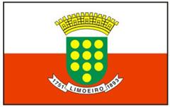 Lei Orgânica do Município de Limoeiro