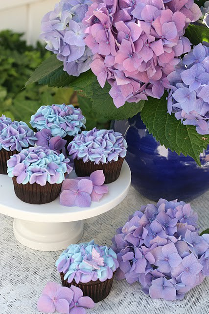 alice jean's flower of the season  hydrangea, Natural flower