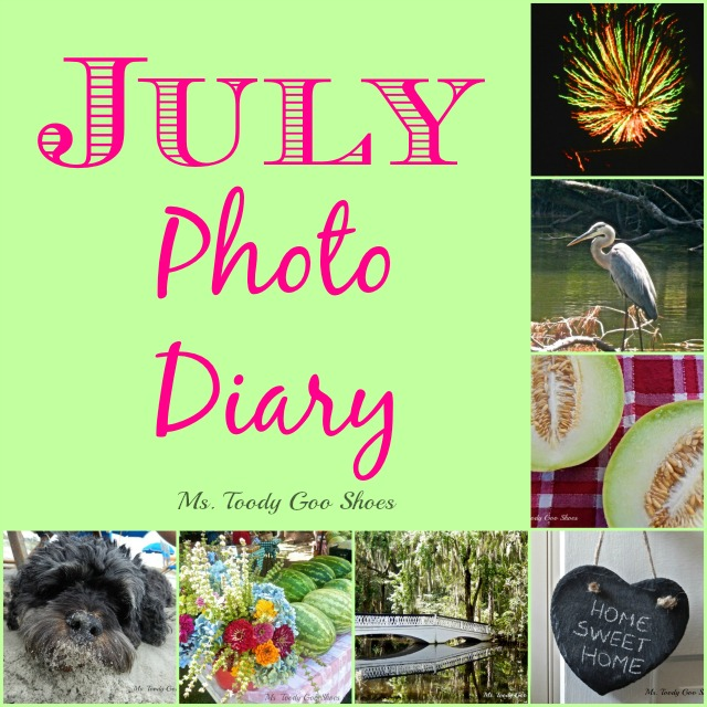 July Photo Diary --- Ms. Toody Goo Shoes