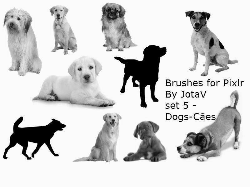 Pinceís para Pixlr By JotaV set 5 - Dogs-Cães