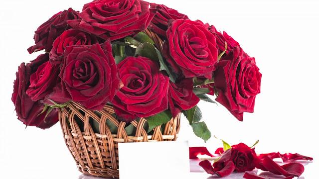 Rosas rojas para el Dia de las Madres