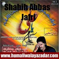 http://ishqehaider.blogspot.com/2013/11/shabih-abbas-jafri-nohay-2014.html