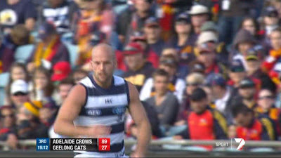 Paul Chapman playing for Geelong against Adelaide