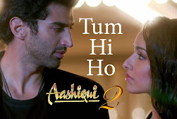 Aashiqui 2 Total Collection