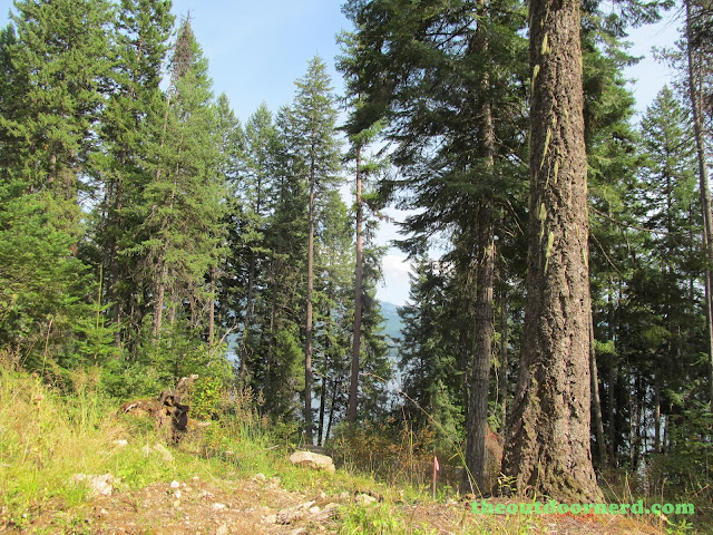 Outlet Campgrounds At Priest Lake, Idaho: Vista