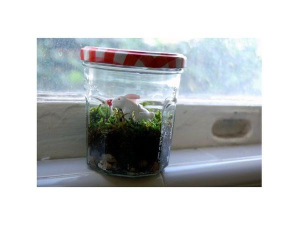mini jardim reciclado:Como fazer jardim no vidro, terrário reciclagem e decoração