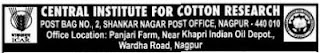 CICR Nagpur Job Vacancy 2012