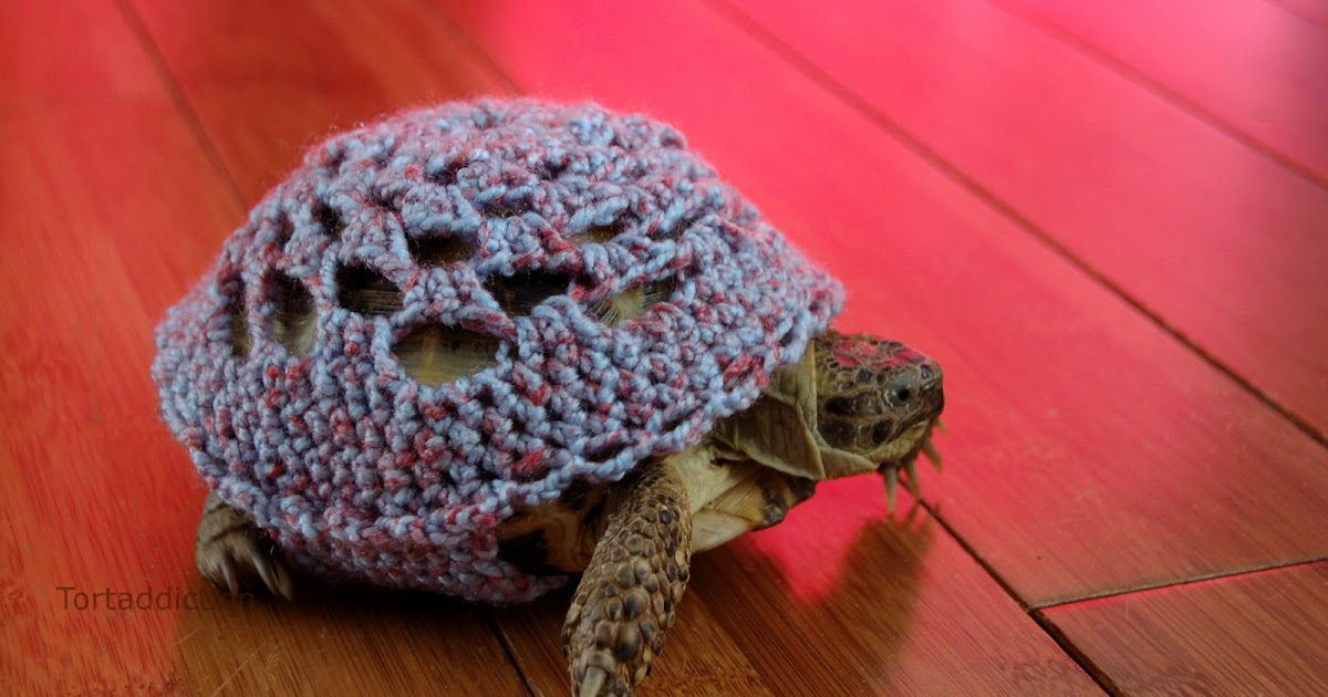 Tortaddiction Mossy Tortoise Etsy Shop Is Now Open