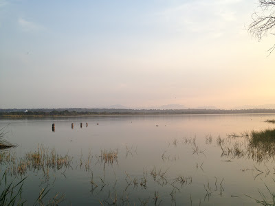 Lago Coatetelco
