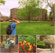 a princeton lion, more pretty tulips, and eric enjoying the foliage