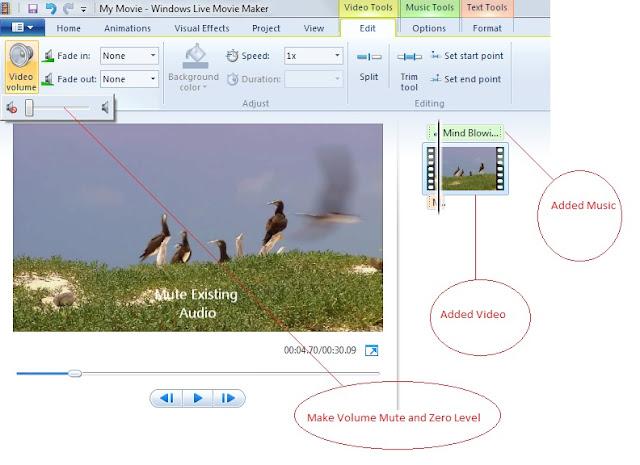 Mute Audio in Windows Live Maker
