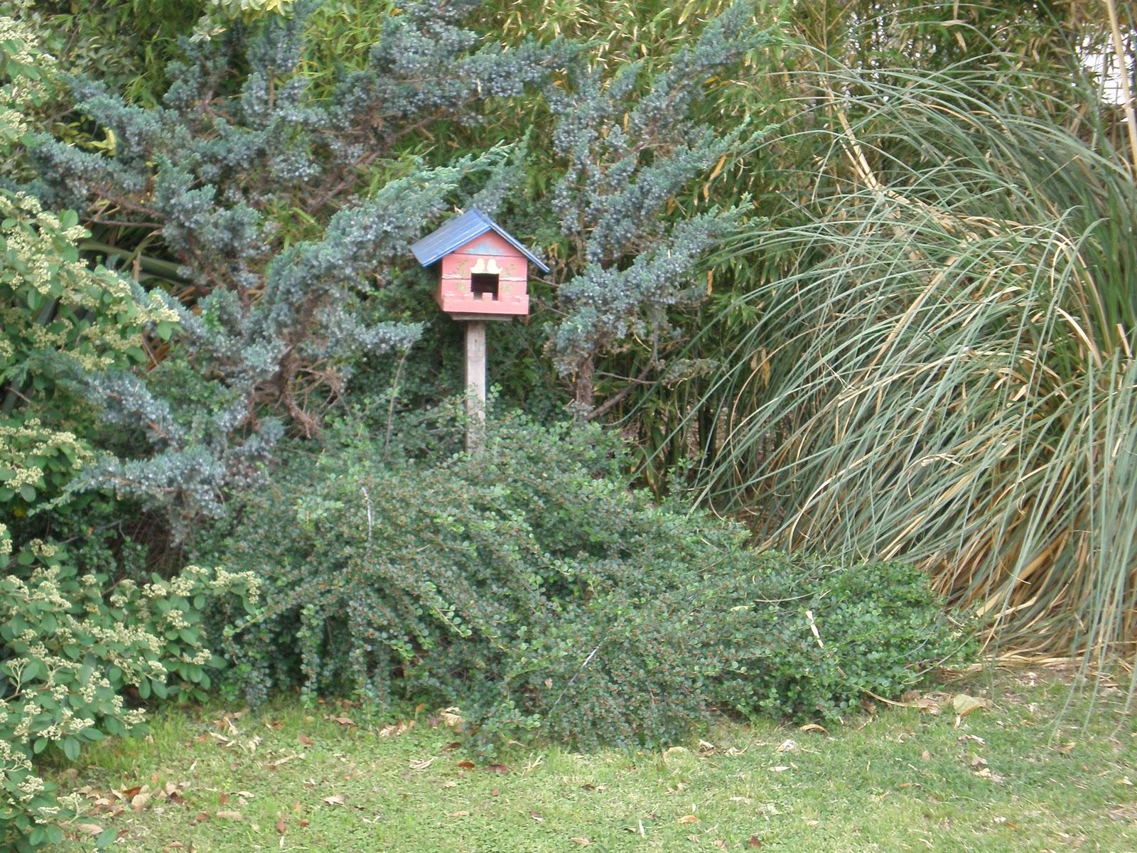 Consejos de jardineria paisajismo y huerta dise o de - Consejos de jardineria ...
