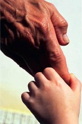Dios y Padre bueno que nos amas y nos buscas.
