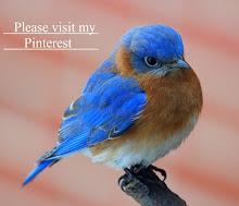 Visit My Pinterest