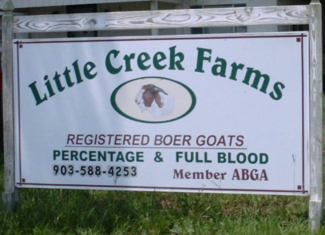 Little Creek Farms