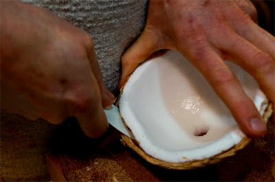 how to get the coconut meat out