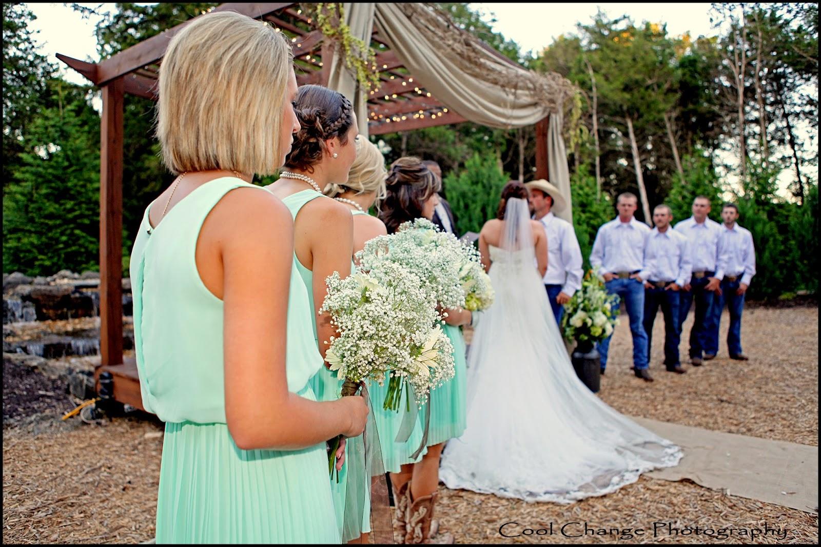 Springfield Mo Branson Mo Wedding Photography Top