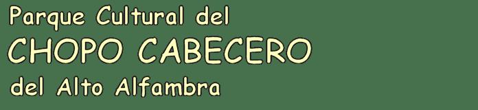 Parque Cultural del CHOPO CABECERO