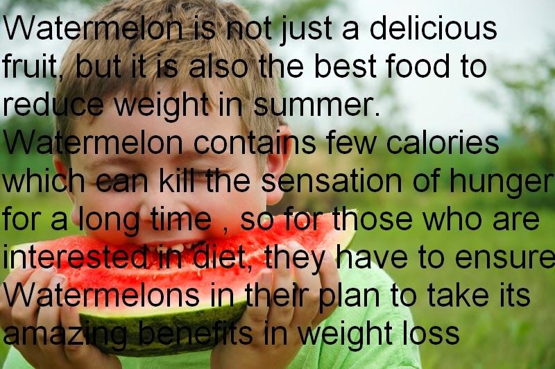 Gm Diet Planner