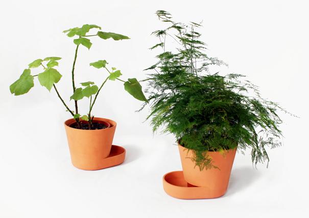النصائح للزراعة المنزلية محدود plantpots01.jpg