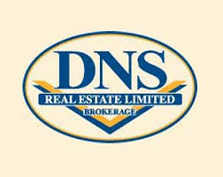 DNS Real Estate