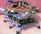 Robot hexapod